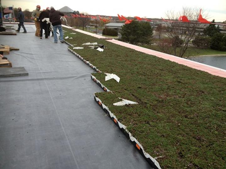 Badger Meter Green Roof Installation2
