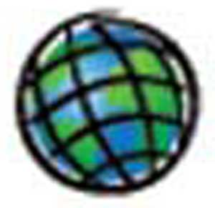 Esri Globe 1305ww