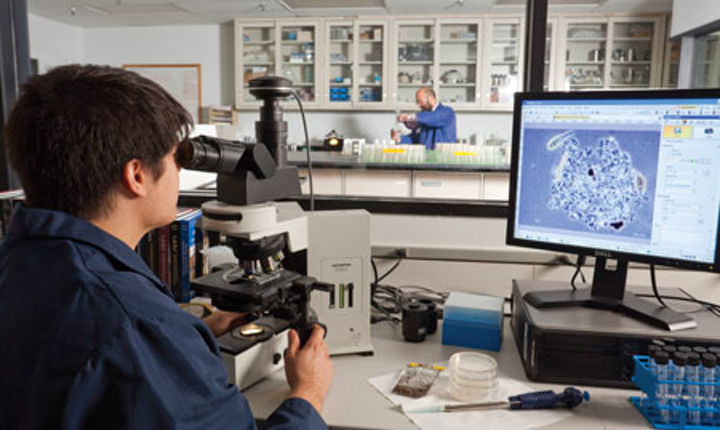 Ge Microbiological Lab In The Woodlands Texas