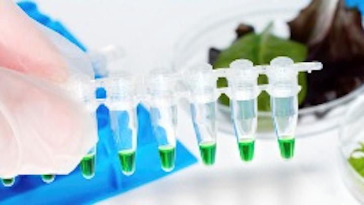 Lab Food Testing S
