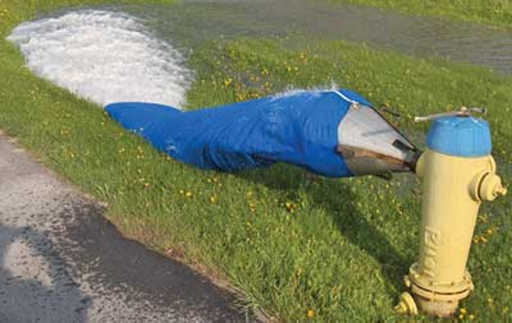 Lakeshore Hydrant 1303ww