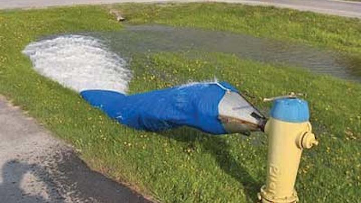 Lakeshore Hydrant 1404ww