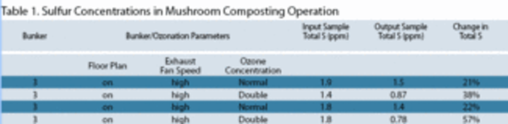 Ozone System Knocks Out Problem Odors in Mushroom Composting