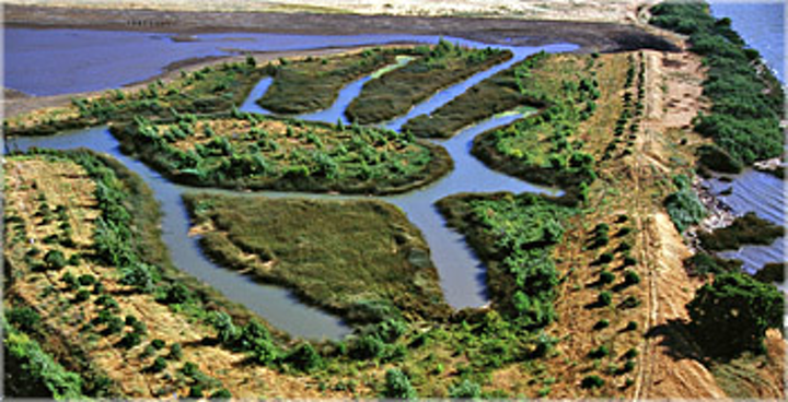 Bay Delta Source:Courthouse News