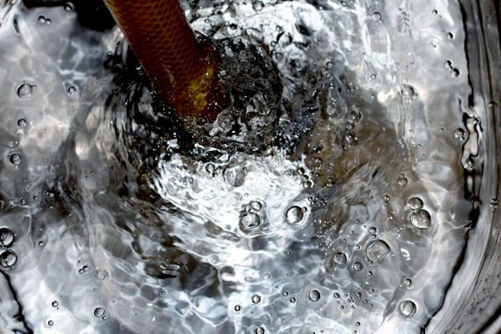 Content Dam Ww Online Articles 2016 04 Hose And Bubbles In Bucket