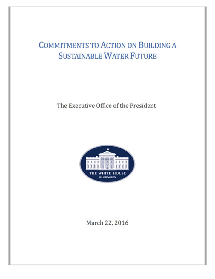 Cover of the White House report.