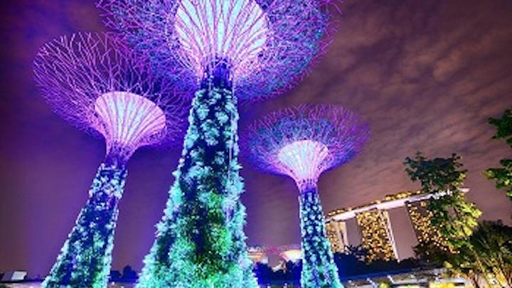 Content Dam Ww Online Articles 2017 02 Singapore