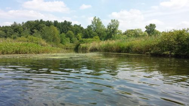 Content Dam Ww Online Articles 2017 06 River Water
