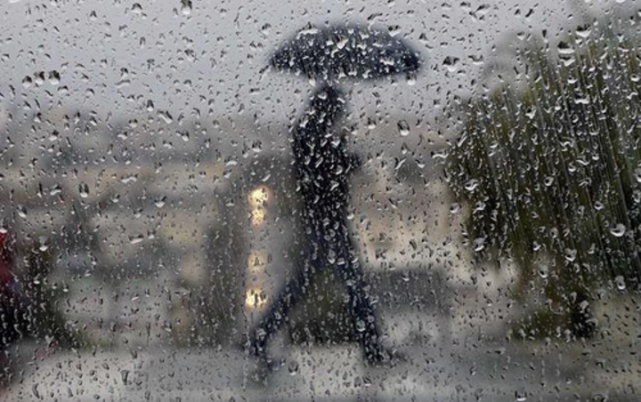 Content Dam Ww Online Articles 2017 07 Rain Generic Umbrella Raindrops