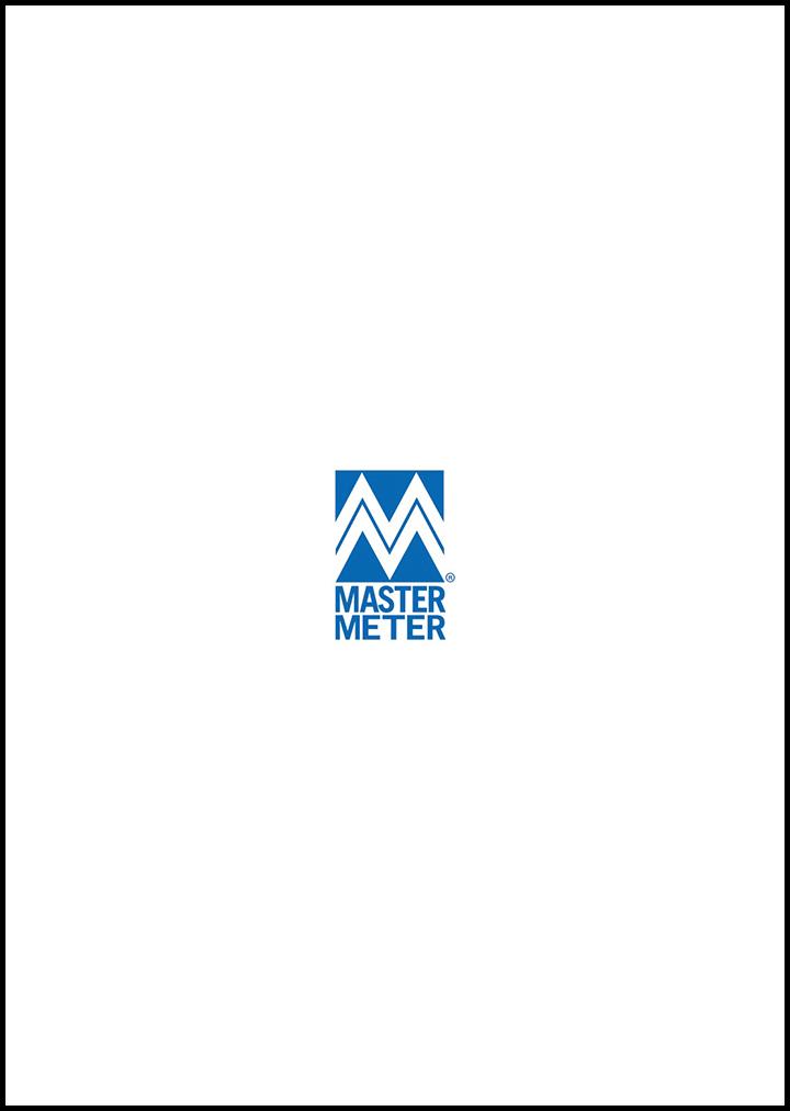 Content Dam Ww Sponsors I N Mastermeter Logo 110