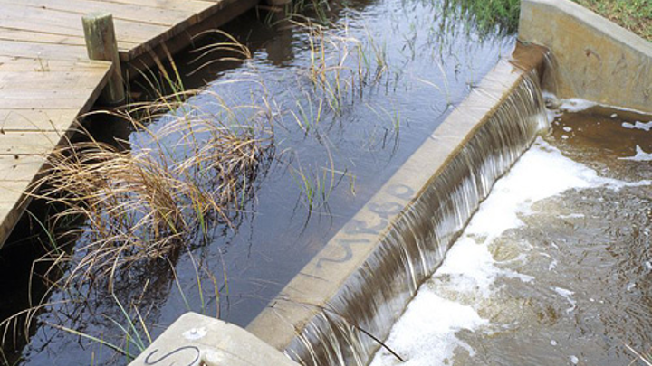 Content Dam Ww Online Articles 2018 02 Csiro Scienceimage 4479 Stormwater Runoff At The Paddocks Wetland In The Northern Adelaide Suburb Of Salisbury Sa 1995