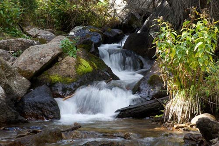 The Clean Water Act decreased measures of water pollution in US lakes, streams and rivers.