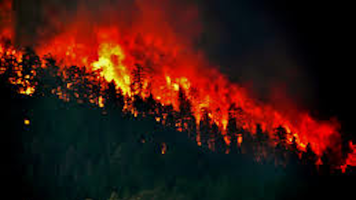 Content Dam Ww Online Articles 2018 11 Ww Wildfires