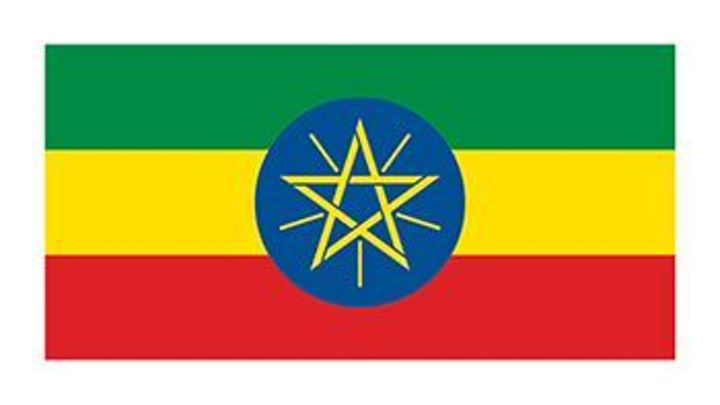 Content Dam Ww Online Articles 2018 11 Wwi Flag Of Ethiopia Temporary Tattoo 2498