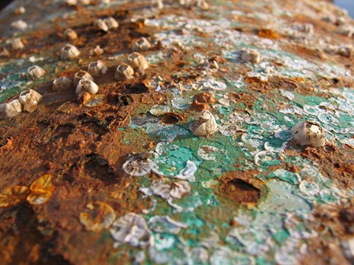 Content Dam Ww Online Articles 2018 12 Ww 800px Corrosion