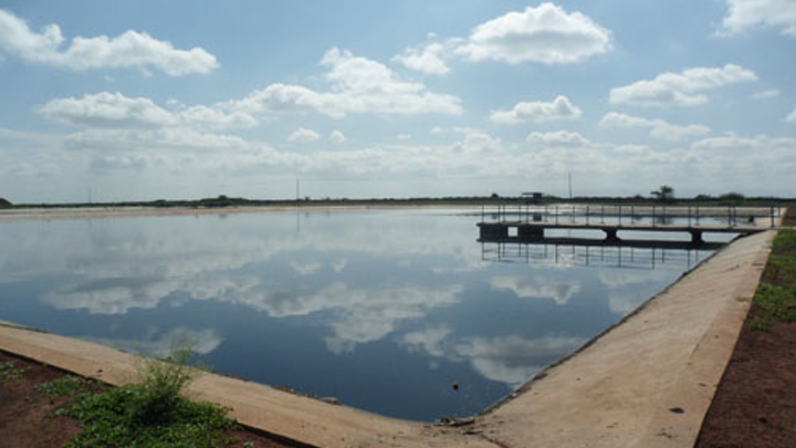 Content Dam Ww Online Articles 2016 12 Facultative Pond  6898410678