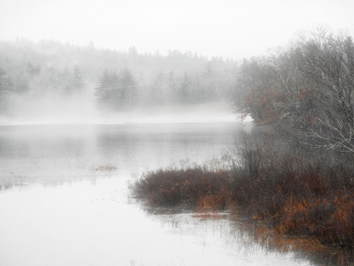 New studies show options for gathering water from fog, condensation