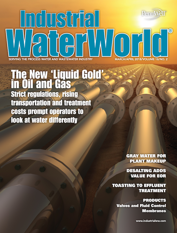 Industrial WaterWorld Volume 18, Issue 2