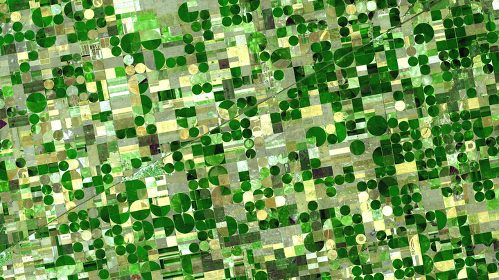 The circles from this satellite image are crops in southwestern Kansas watered by central pivot irrigation, which draws water from a well in the center of each field. The water comes in part from the Ogallala Aquifer, a layer of groundwater that lies under about 173,746 square miles (450,000 square kilometers) of the Great Plains -- an area that includes parts of eight US states. The water is between 30 and 100 meters below ground, and the amount of water in the aquifer varies greatly from region to region. The image was taken by the Advanced Spaceborne Thermal Emission and Reflection Radiometer (ASTER) imaging instrument in the Terra satellite.